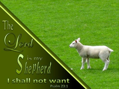 Psalm 23:1 The Lord Is My Shepherd (sage)